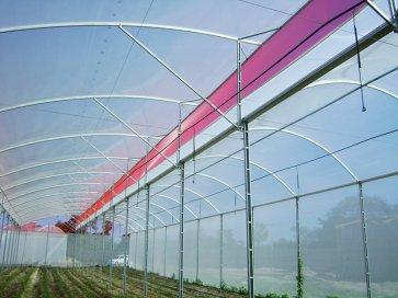 Filme Plástico para Cobertura de Estufa - 120 Microns - Suncover AV Difuso - Canal Agrícola
