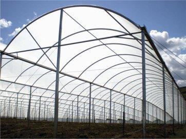 Filme Plástico para Cobertura de Estufa - 100 Microns - Suncover Difuso - Canal Agrícola