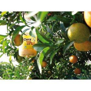 Armadilha para Moscas das Frutas - Cera Trap - Embalagem 600ml