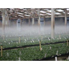 Nebulizador para Irrigação Mister Vazão 25,7 a 32,6 l/h - Senninger - Kit com 10 peças