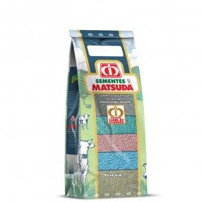 Semente de Capim Massai (P. maximum x P. infestum) - 10Kg - V/C: 80 (4 Kg/ha) - Incrustada - Matsuda