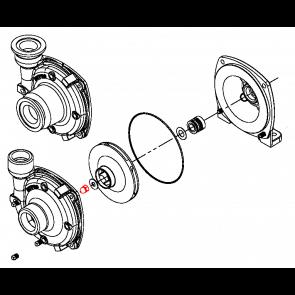 Porca do Eixo Rotor em Aço Inox para Bomba Centrífuga - Hypro (3430-0825)
