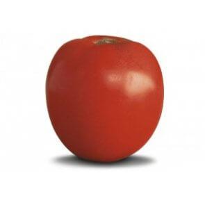 Semente de Tomate Santa Clara Horticeres - Canal Agrícola