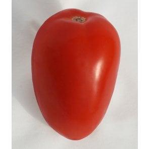 Semente de Tomate Híbrido Angelim Isla (274) - Canal Agrícola