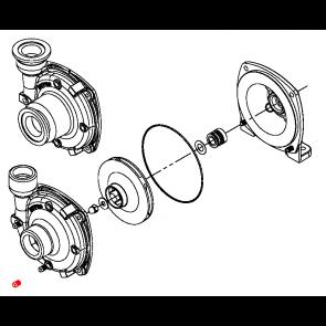 Parafuso para Carcaça da Bomba Centrífuga de Aço Inox - Bujão Dreno - Pacote com 10 unidades - Hypro (2406-0016) - Canal Agrícola