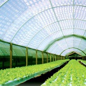 Tela Sombrite Original 30% Preta - Bobina - Monofilamento - 95 g/m2 - Garantia de 10 anos - Equipesca (1003)