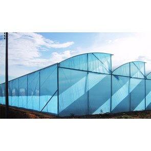 Filme Plástico para Cobertura de Estufa - 120 Microns - Suncover AV Blue