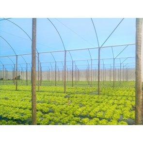 Filme Plástico para Cobertura de Estufa 120 Microns Suncover AV Blue - Canal Agrícola